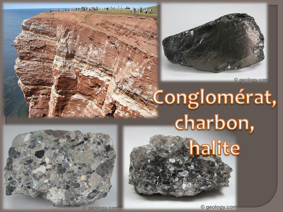 Conglomérat, charbon, halite