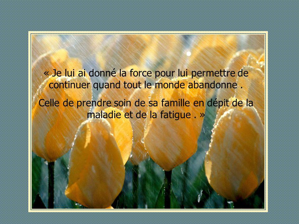 Diaporama d di aux membres du forum ppt t l charger - Porter plainte pour abandon de famille ...