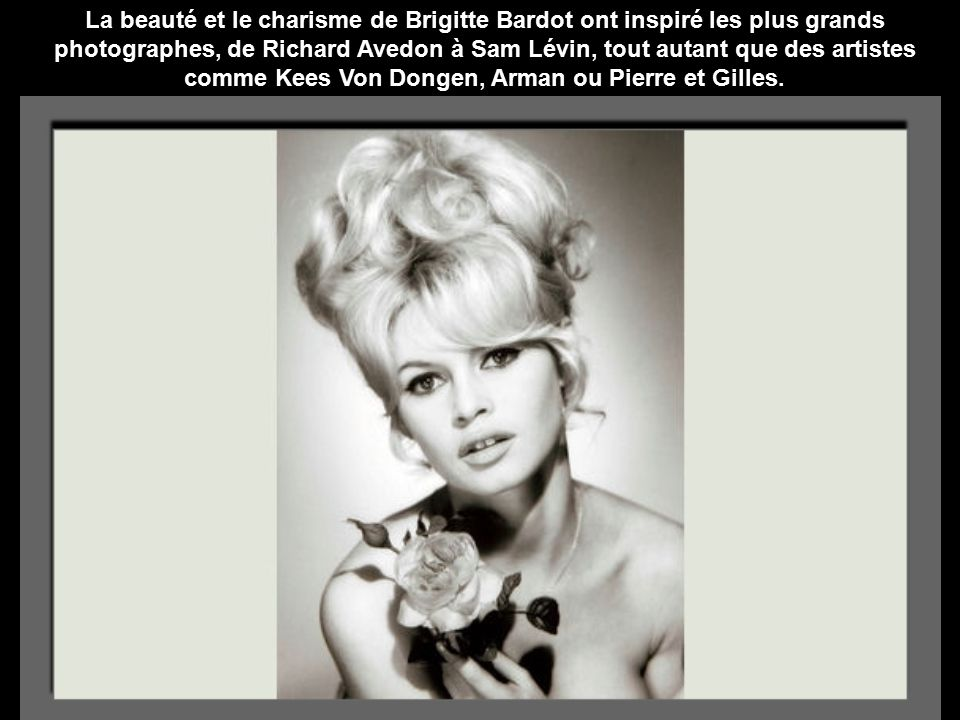 La beauté et le charisme de Brigitte Bardot ont inspiré les plus grands photographes, de Richard Avedon à Sam Lévin, tout autant que des artistes comme Kees Von Dongen, Arman ou Pierre et Gilles.