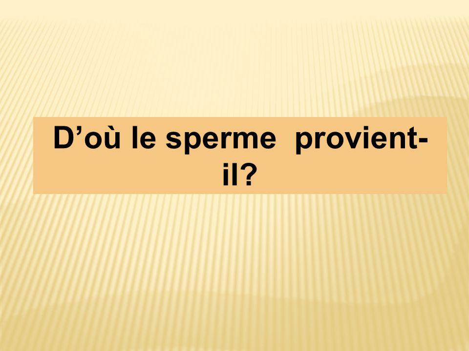 D'où le sperme provient-il