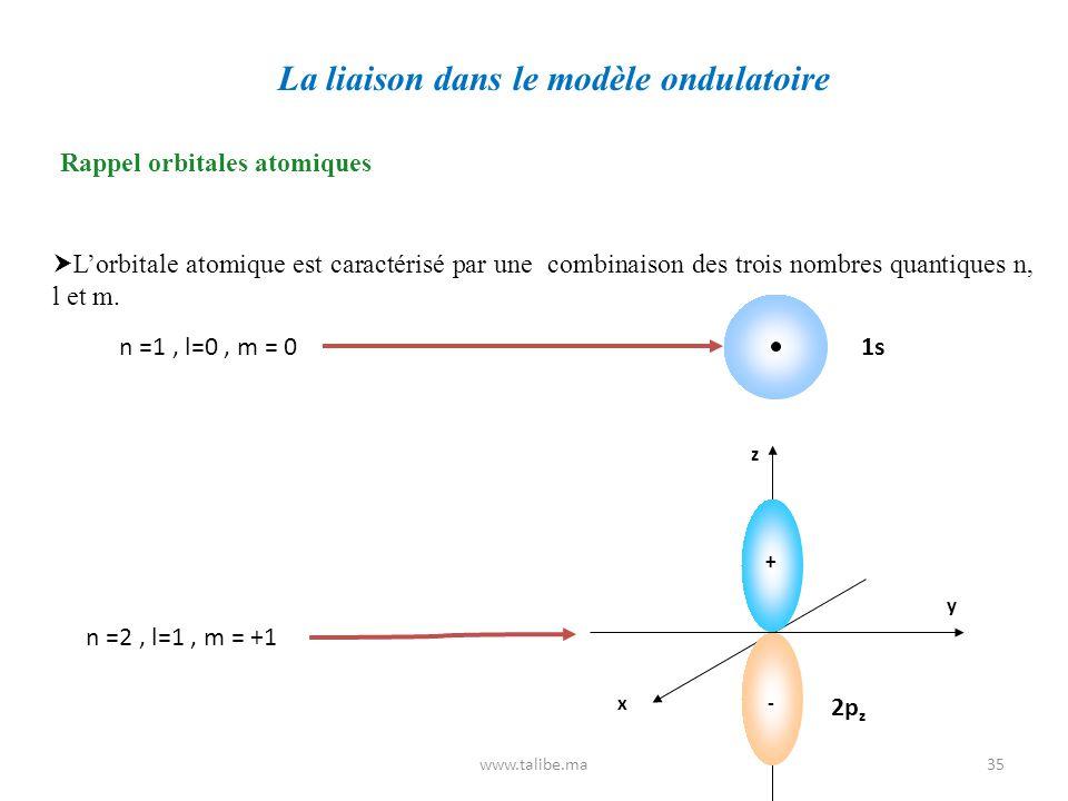 La liaison dans le modèle ondulatoire