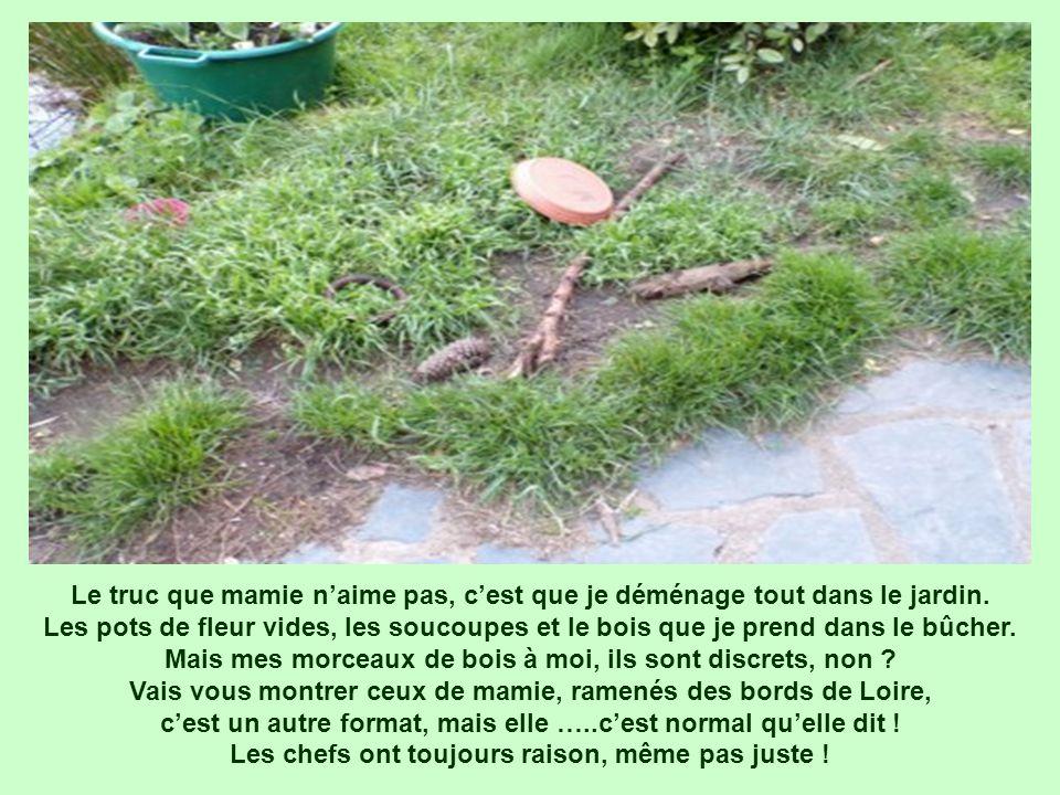 C est la f te des grenouilles ppt video online t l charger - Mamie baise dans le jardin ...