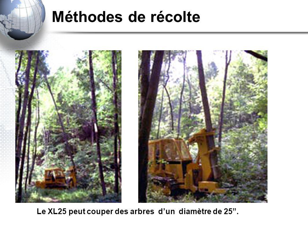 Les ressources foresti res ppt video online t l charger - Peut on couper les racines des orchidees ...