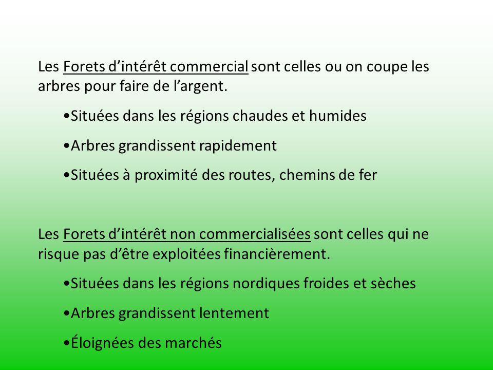 Les ressources foresti res ppt video online t l charger - Jeux de tronconneuse qui coupe les arbres ...