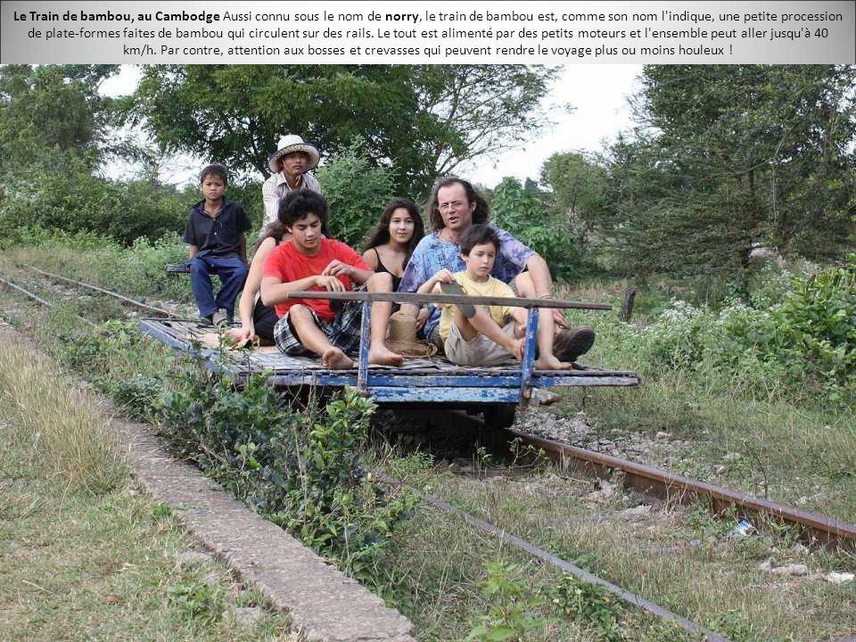 11 types de transports dans le monde tr s inhabituels - Tout sur le bambou ...