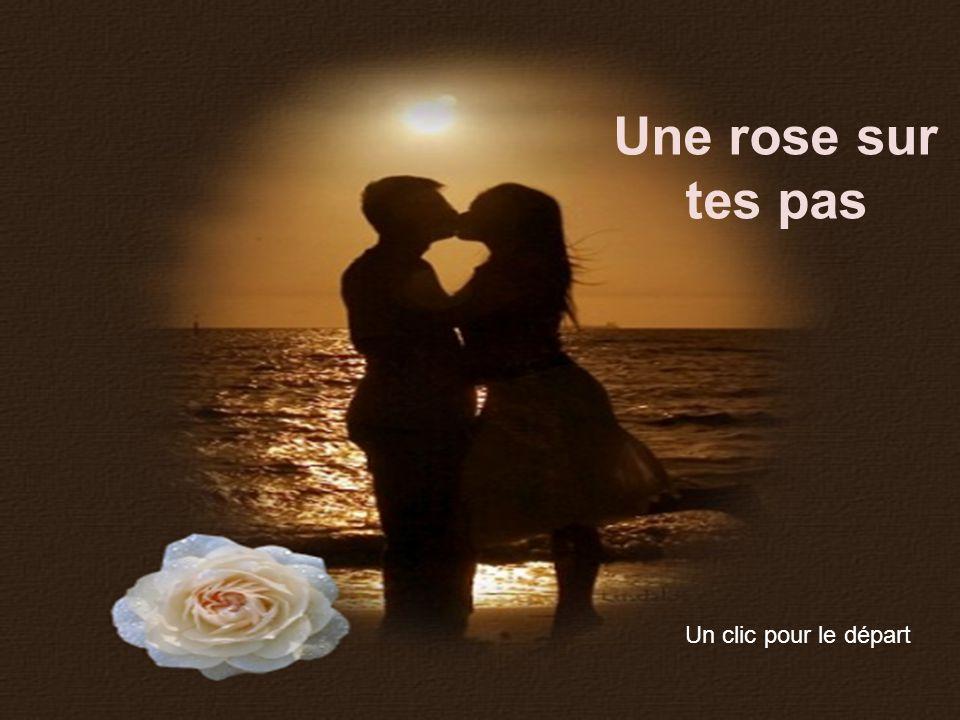 Une rose sur tes pas un clic pour le d part ppt t l charger - Comment couper une rose sur un rosier ...