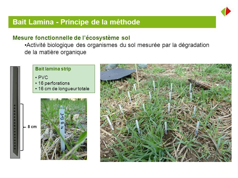 Jubileum oberacker 4 juin ppt video online t l charger - Methode simple pour mesurer terre ...