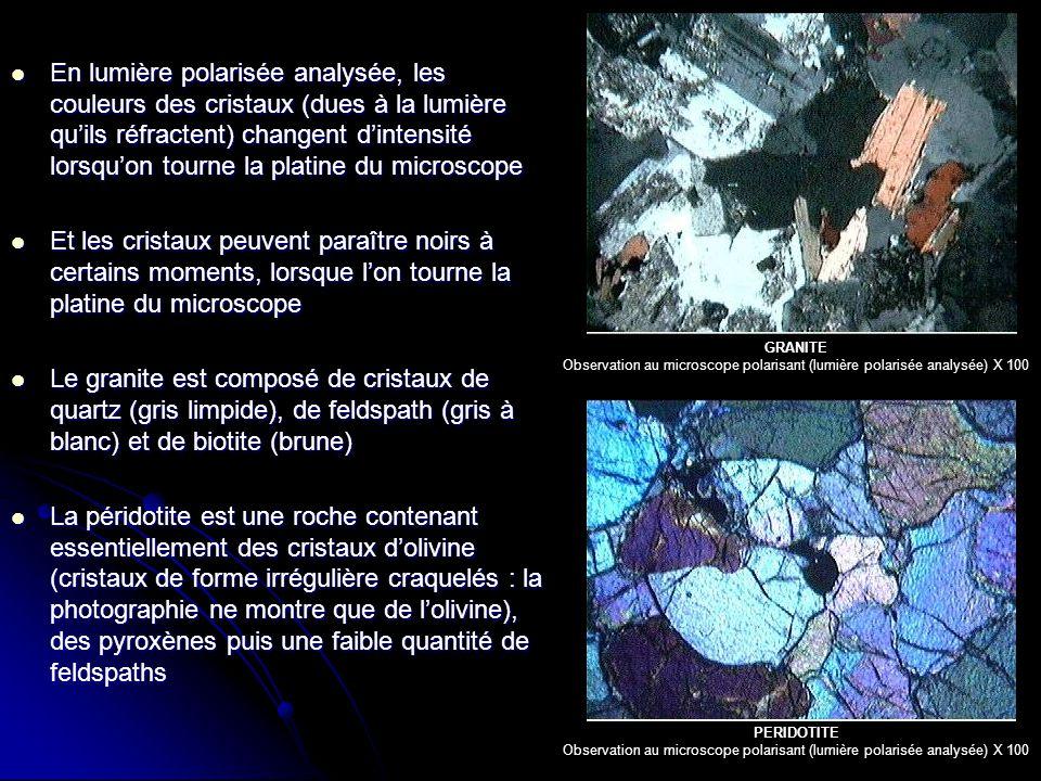 En lumière polarisée analysée, les couleurs des cristaux (dues à la lumière qu'ils réfractent) changent d'intensité lorsqu'on tourne la platine du microscope