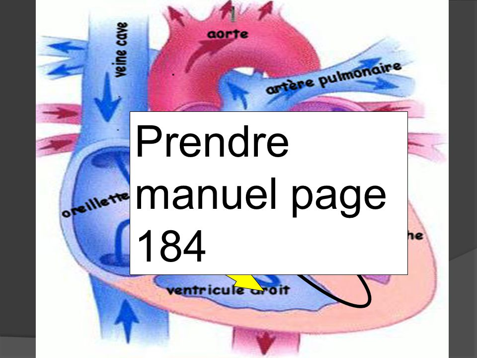 Prendre manuel page 184