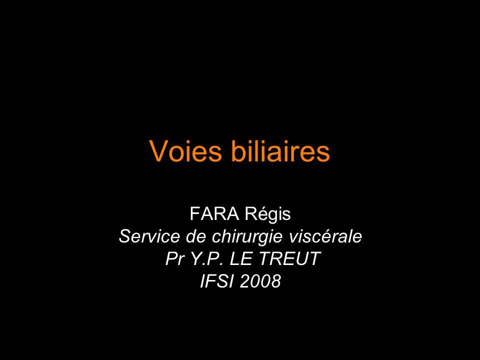 FARA Régis Service de chirurgie viscérale Pr Y.P. LE TREUT IFSI 2008