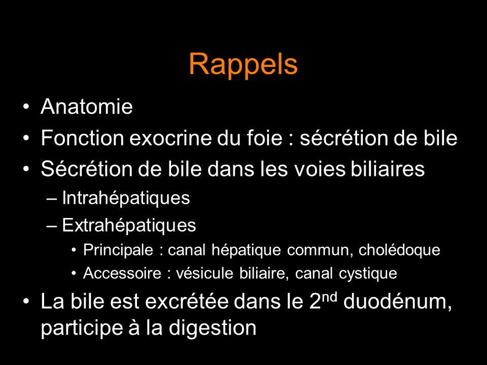 Rappels Anatomie Fonction exocrine du foie : sécrétion de bile