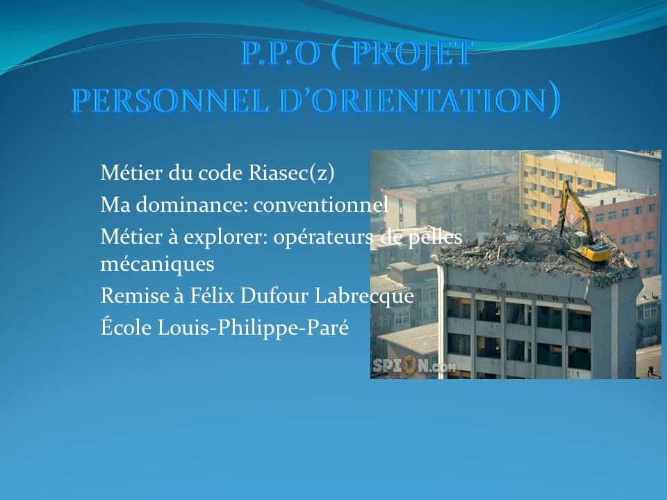 P.P.O ( projet personnel d'orientation)