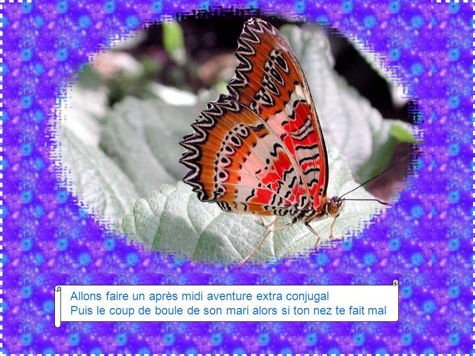 L 39 effet papillon chant par benabar diaporama de jacky questel ppt t l charger - Que faire apres un coup de soleil ...