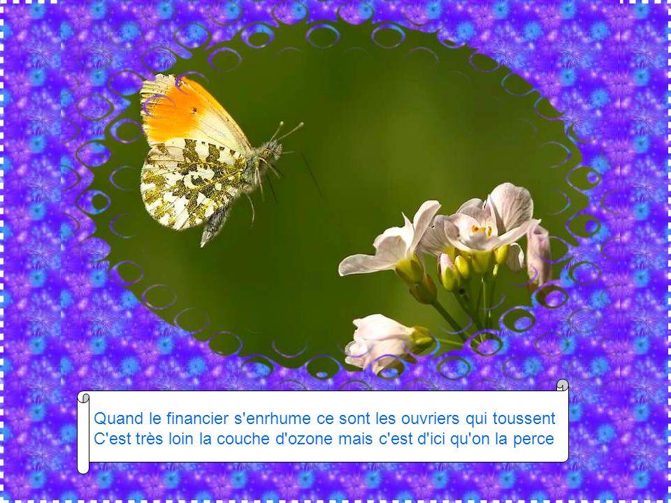 L 39 effet papillon chant par benabar diaporama de jacky questel ppt t l charger - Qu est ce que la couche d ozone ...