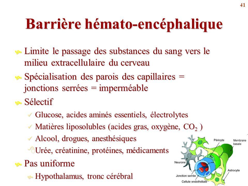 Barrière hémato-encéphalique
