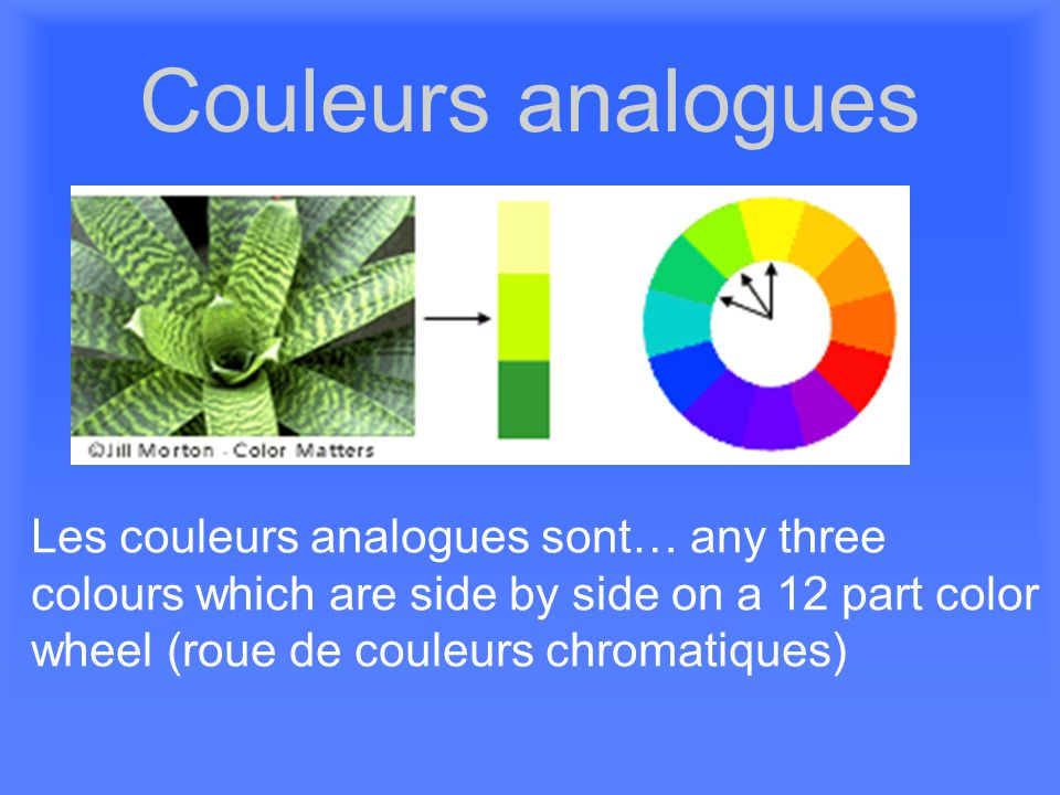 Couleurs analogues Les couleurs analogues sont… any three colours which are side by side on a 12 part color wheel (roue de couleurs chromatiques)