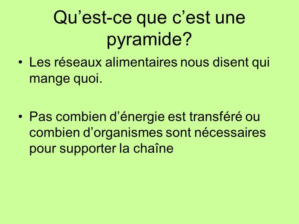 Pyramides p pyramids ppt video online t l charger for Qu est ce que mange une poule