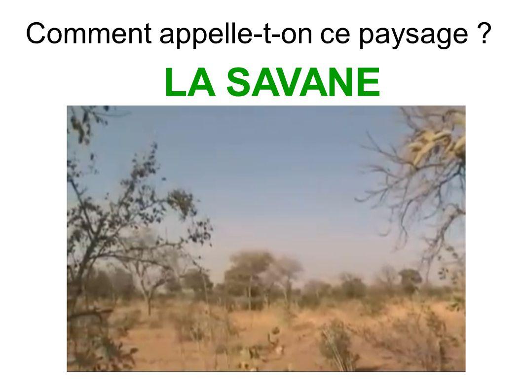 Situer issaogo ppt video online t l charger - Comment s appelle l arbre du kaki ...