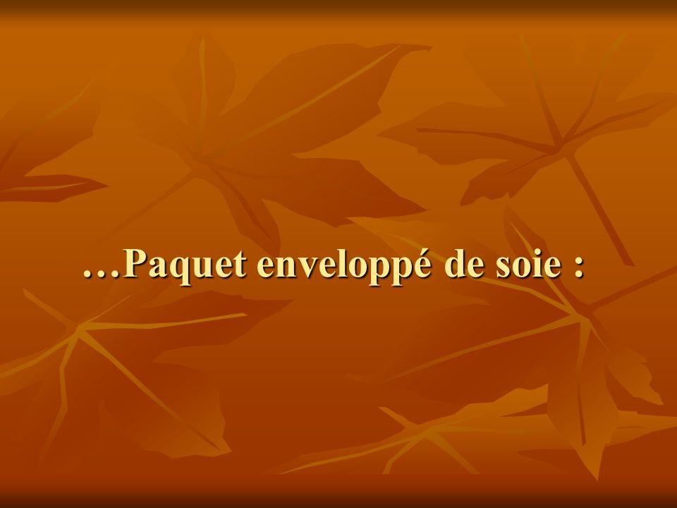 …Paquet enveloppé de soie :
