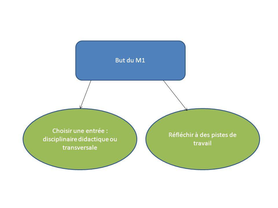 Choisir une entrée : disciplinaire didactique ou transversale