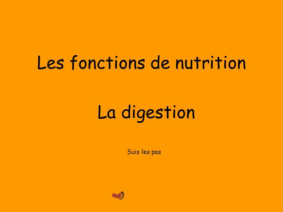 Les fonctions de nutrition