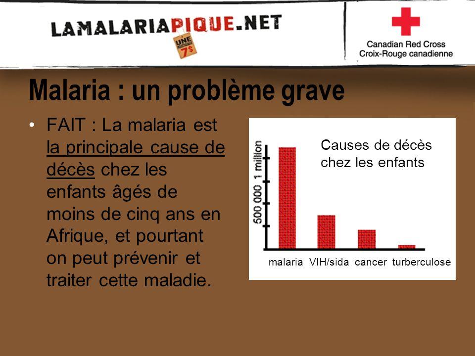la campagne de la croix rouge contre la malaria ppt video online t l charger. Black Bedroom Furniture Sets. Home Design Ideas