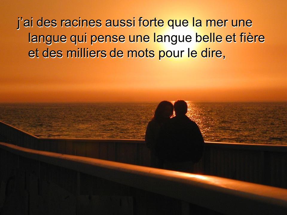 j'ai des racines aussi forte que la mer une langue qui pense une langue belle et fière et des milliers de mots pour le dire,