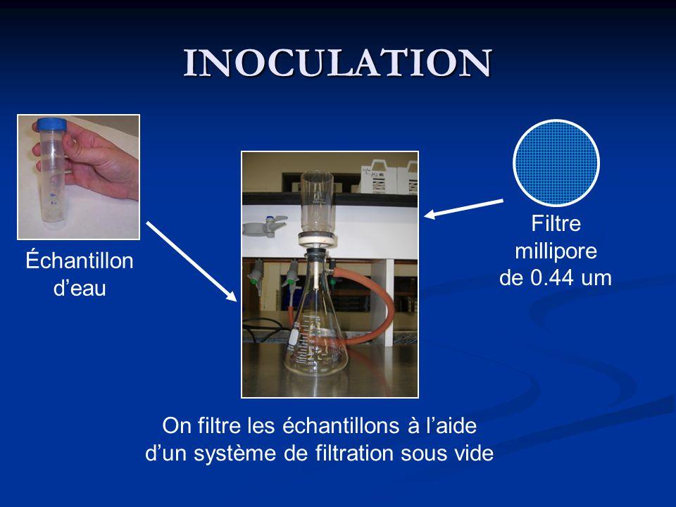 INOCULATION Filtre millipore de 0.44 um Échantillon d'eau