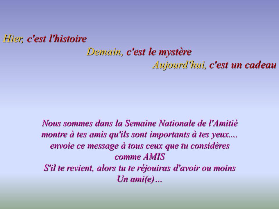 Joyeuse semaine nationale de l 39 amiti ppt video online for Foire dans la somme aujourd hui