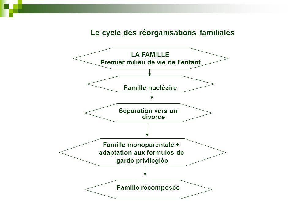Le cycle des réorganisations familiales