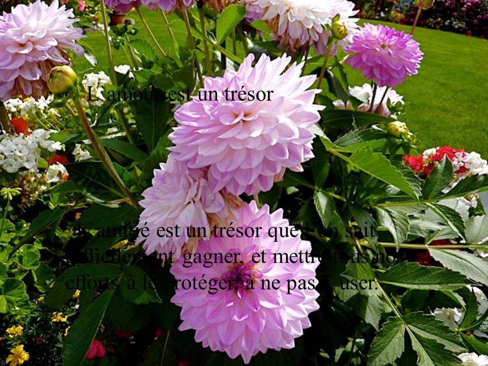 l amour est un tr u00e9sor l amiti u00e9 est un tr u00e9sor que l on sait difficilement gagner  et mettre tous