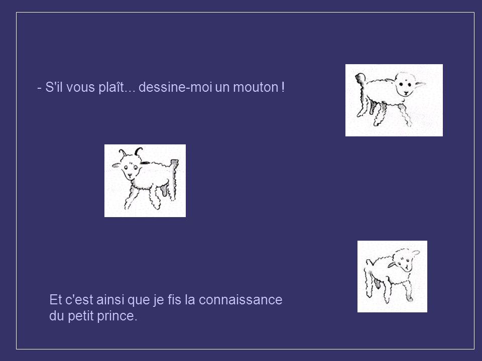 - S il vous plaît... dessine-moi un mouton !