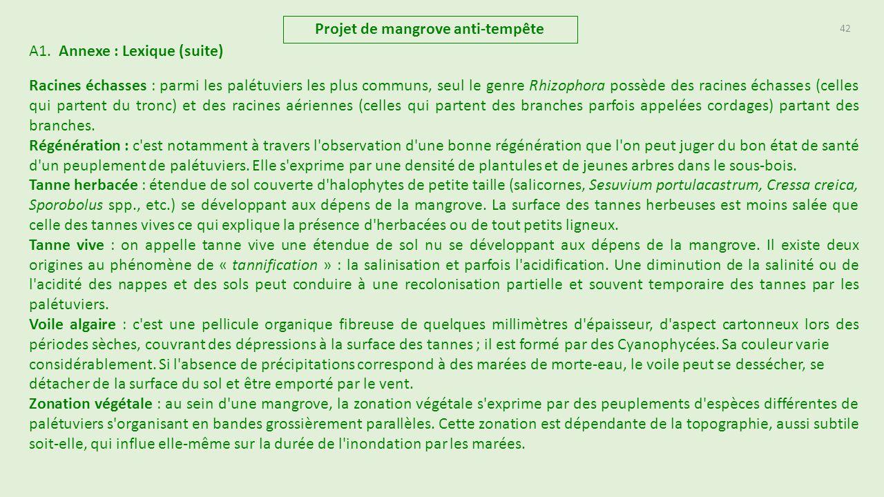 Projet de mangrove anti temp te ppt t l charger - Peut on couper des branches du voisin ...