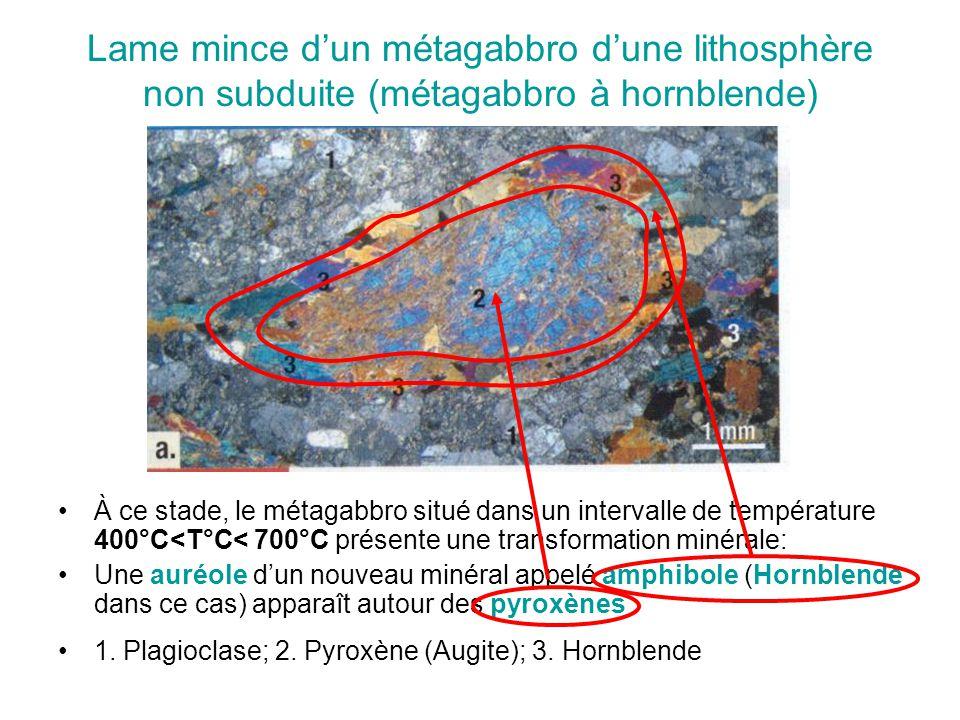 Lame mince d'un métagabbro d'une lithosphère non subduite (métagabbro à hornblende)