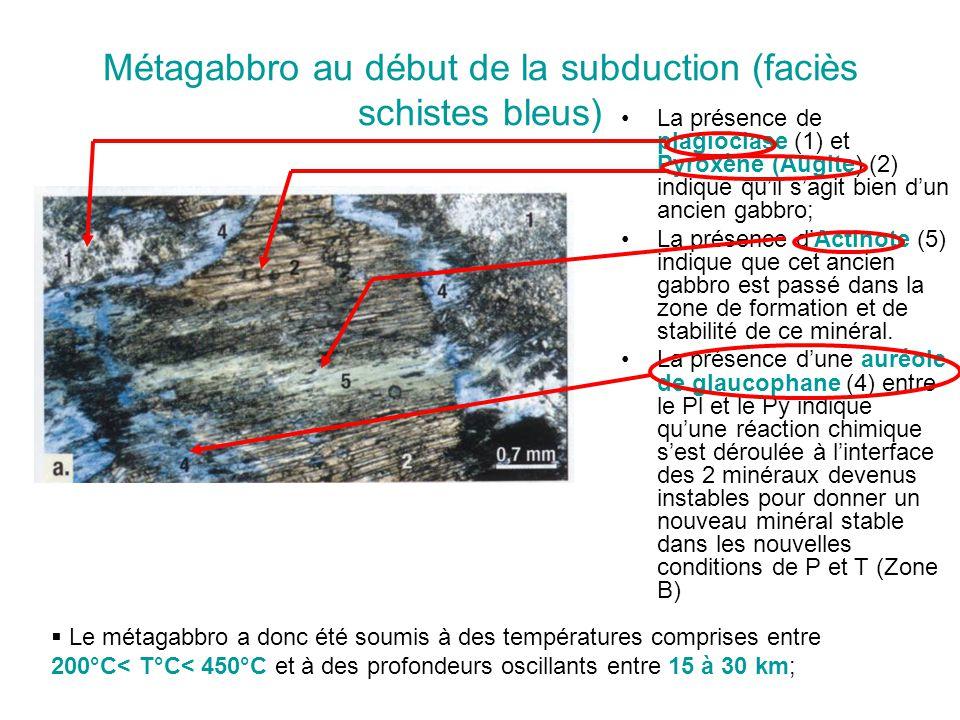 Métagabbro au début de la subduction (faciès schistes bleus)