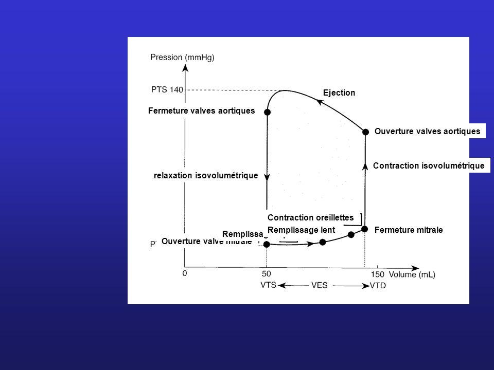 Ejection Fermeture valves aortiques. Ouverture valves aortiques. Contraction isovolumétrique. relaxation isovolumétrique.