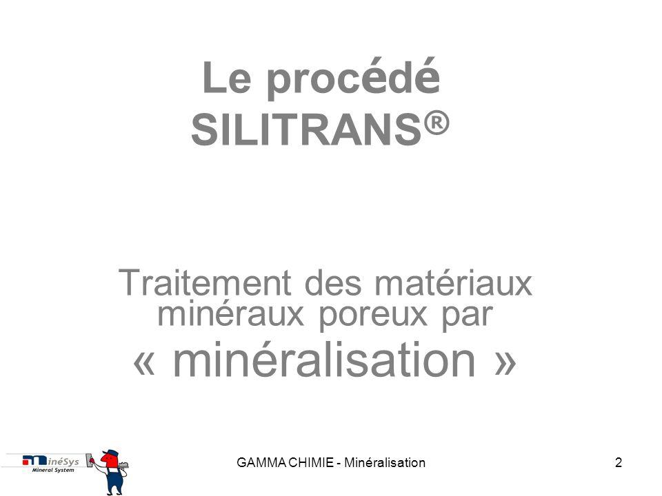 Traitement des matériaux minéraux poreux par « minéralisation »