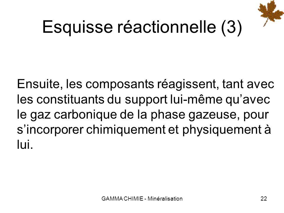 Esquisse réactionnelle (3)