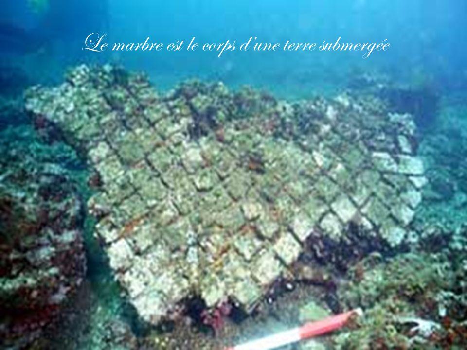 Le marbre est le corps d'une terre submergée