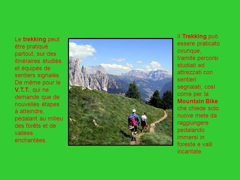 Il Trekking può essere praticato ovunque, tramite percorsi studiati ed attrezzati con sentieri segnalati, così come per la Mountain Bike che chiede solo nuove mete da raggiungere pedalando immersi in foreste e valli incantate.