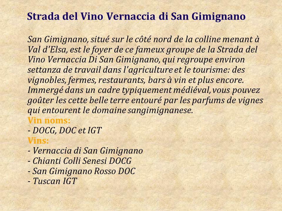 Strada del Vino Vernaccia di San Gimignano