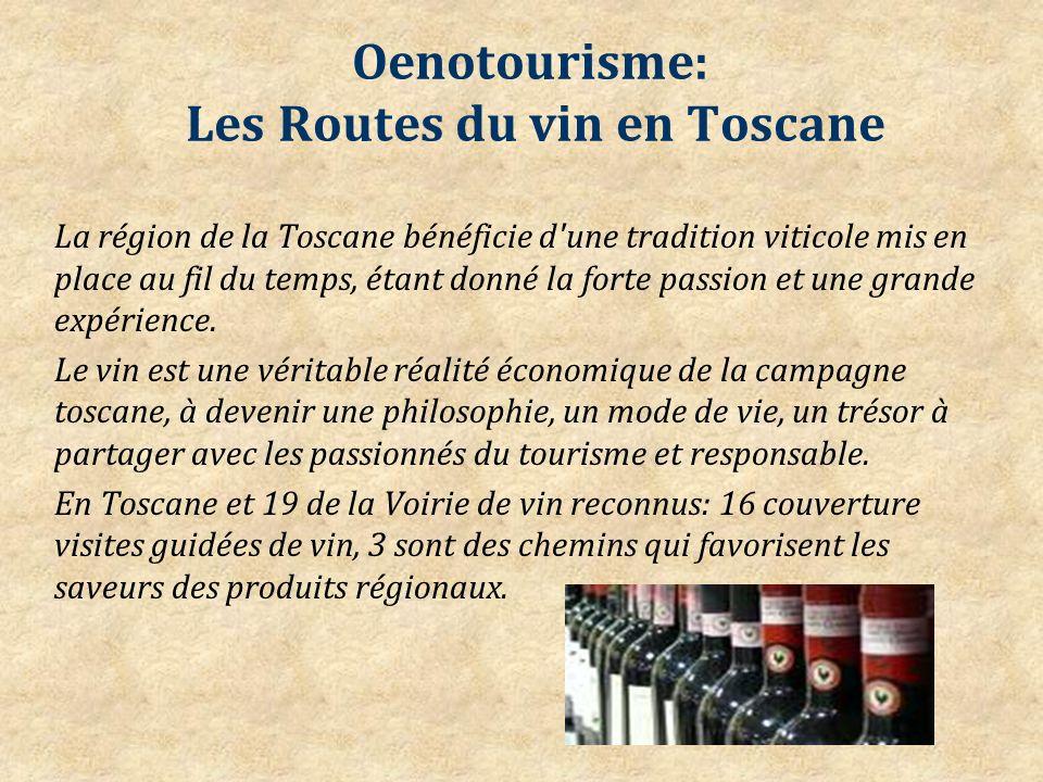 Oenotourisme: Les Routes du vin en Toscane