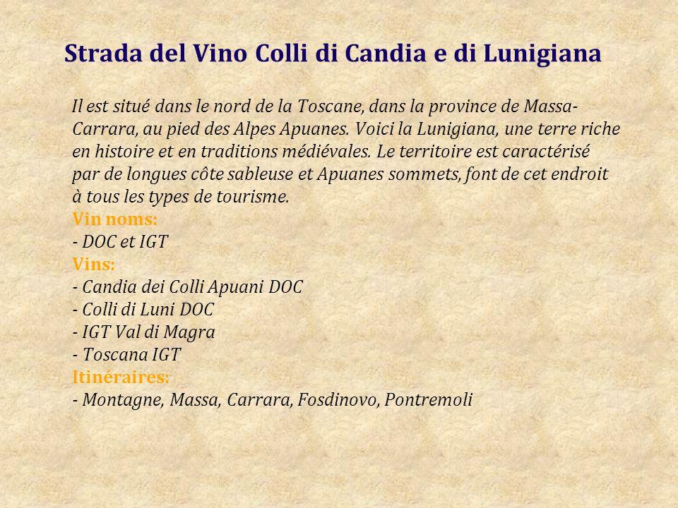 Strada del Vino Colli di Candia e di Lunigiana