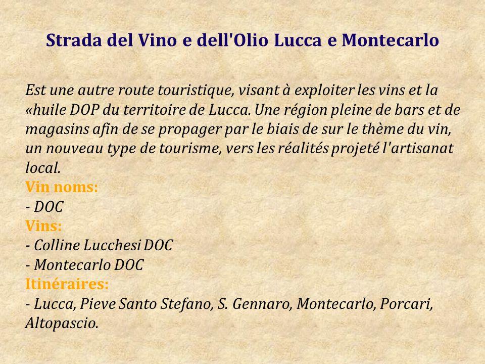 Strada del Vino e dell Olio Lucca e Montecarlo