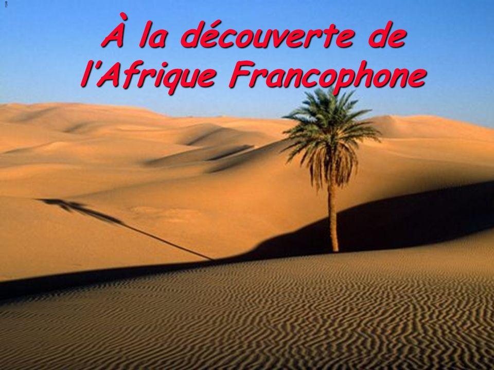 À la découverte de l'Afrique Francophone