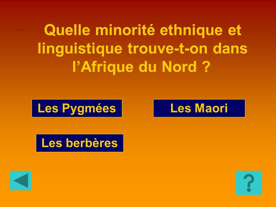 CIVILISATION 9 Quelle minorité ethnique et linguistique trouve-t-on dans l'Afrique du Nord Les Pygmées.