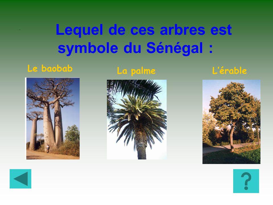 Lequel de ces arbres est symbole du Sénégal :