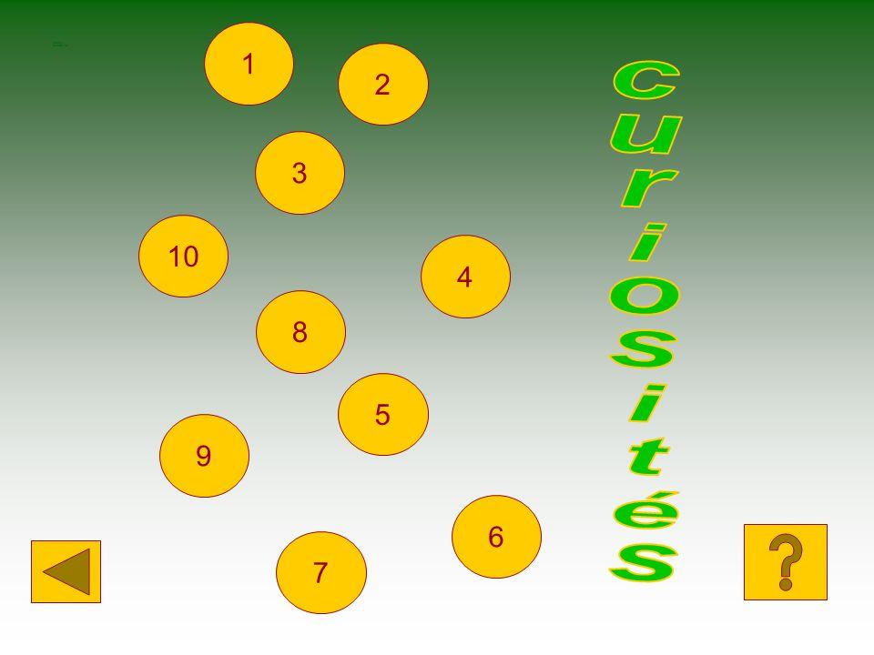 SCELTA CURIOSITéS 1 2 3 10 4 8 curiosités 5 9 6 7