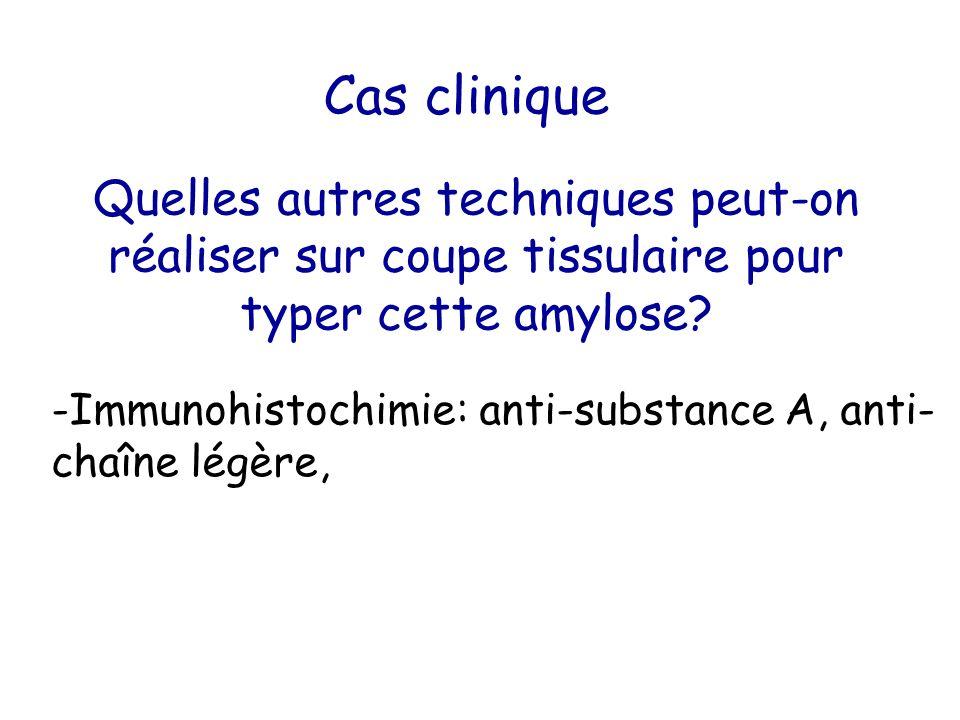 Cas clinique Quelles autres techniques peut-on réaliser sur coupe tissulaire pour typer cette amylose