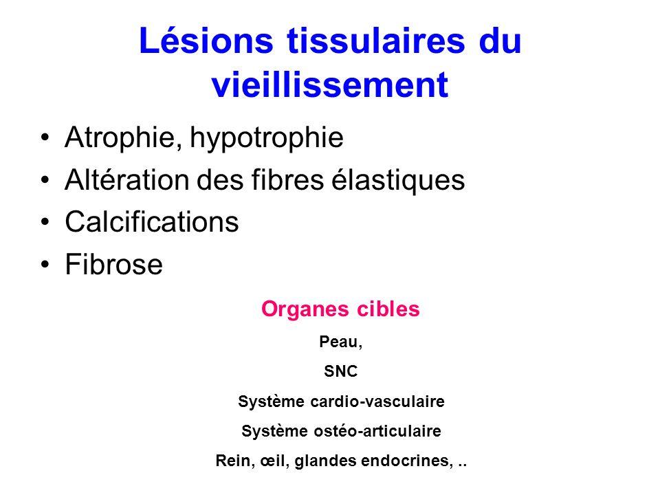 Lésions tissulaires du vieillissement